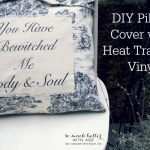 You Have Bewitched Me Body and Soul Pillow (Plus Silhouette Giveaway!)