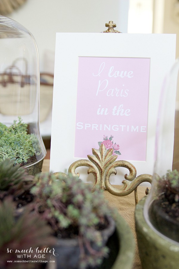 Spring flowers in terrariums and springtime printable | somuchbetterwithage.com