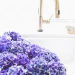 Beautiful Flowers & Kitchen Details