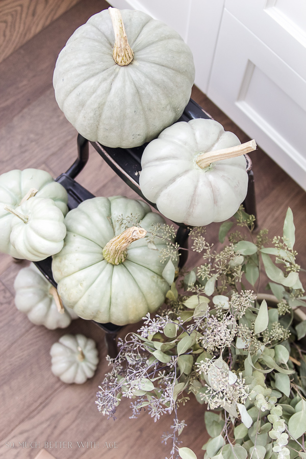 DIY Heirloom Pumpkins